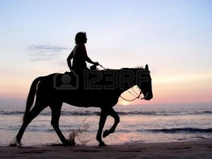 347529-lone-rider-at-sunset