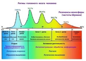 Ритмы-головного-мозга-человека